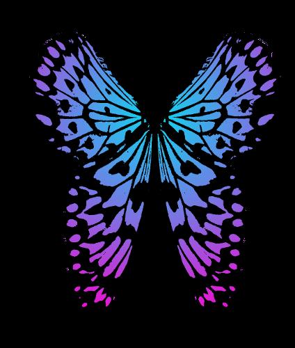 Rainbow Butterfly Logo Design