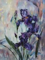 irises by longest13