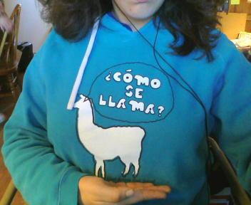 Llama by Sweater01