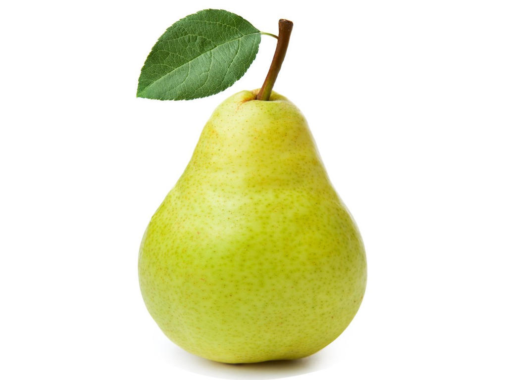 Pear  definition of pear by The Free Dictionary