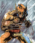 Artist Proof Card - Wolverine