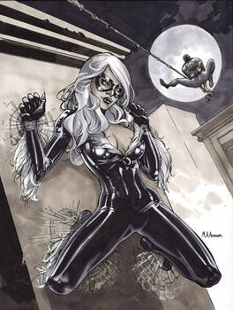 Black Cat Sketch 3