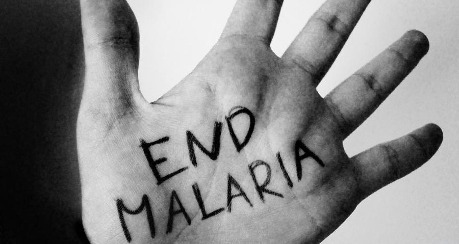 Image result for end malaria