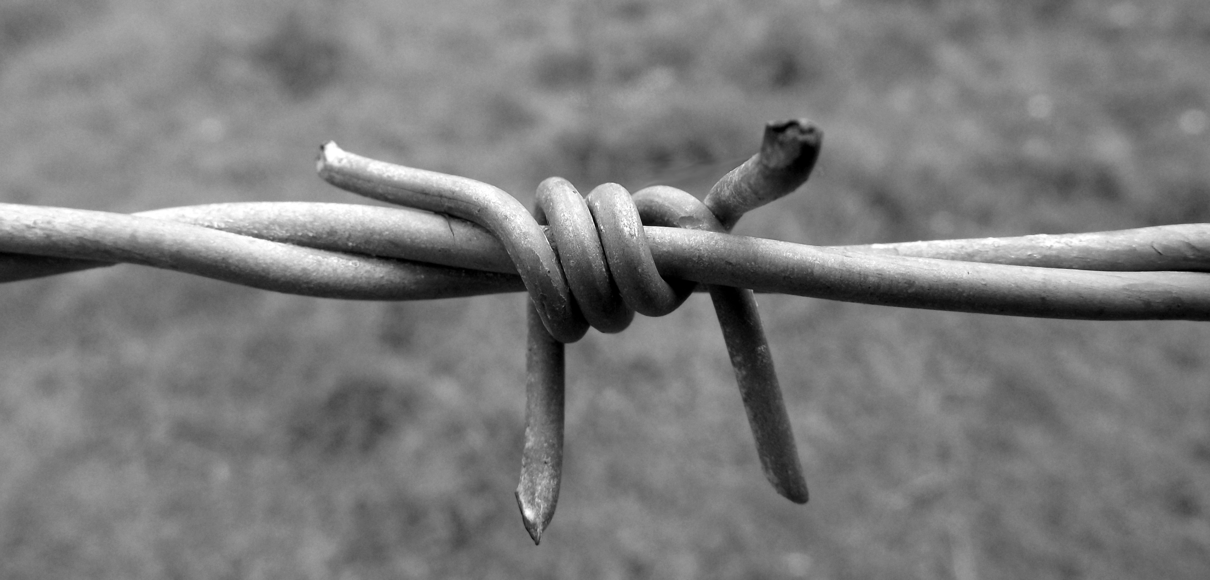 Barbed wire black and white by paul madden on deviantart