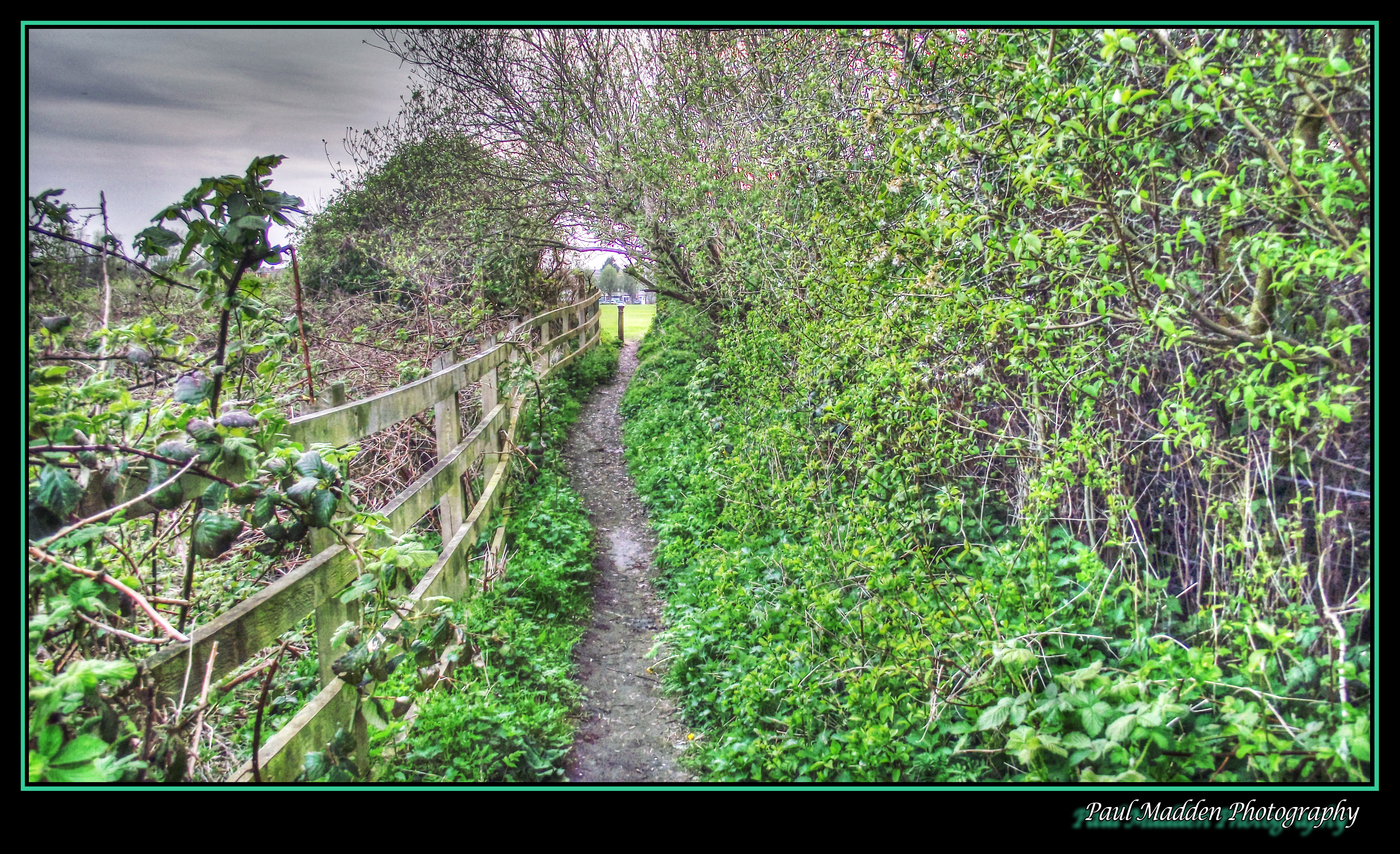 Rimrose Valley Path - HDR by Paul-Madden