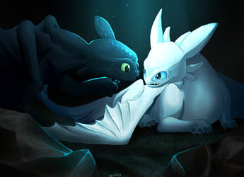 Toothless And Light Fury - Show Some Love by Solaphea
