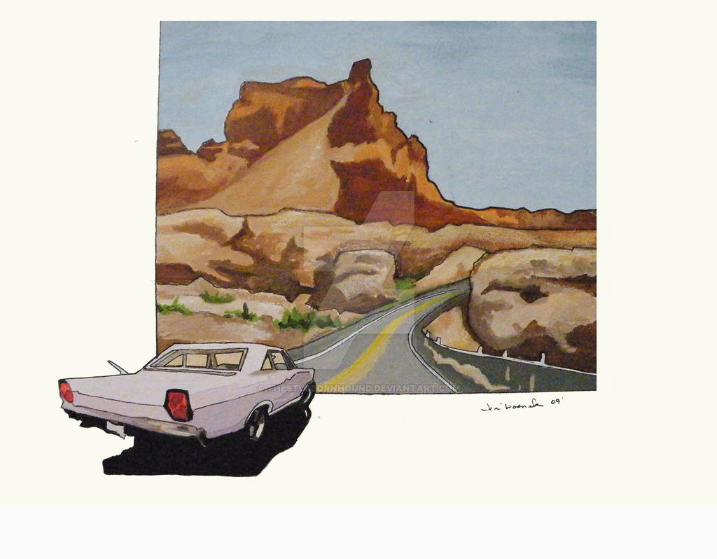 Ford galaxie Painting