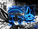 X-ray chameleon