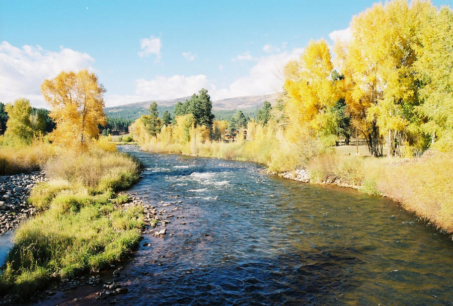 vallecitos chat sites Fact or fiction: forrest fenn and his treasure updated on learned that there is a river called rio vallecitos which has a @hotmailcom and we can chat.