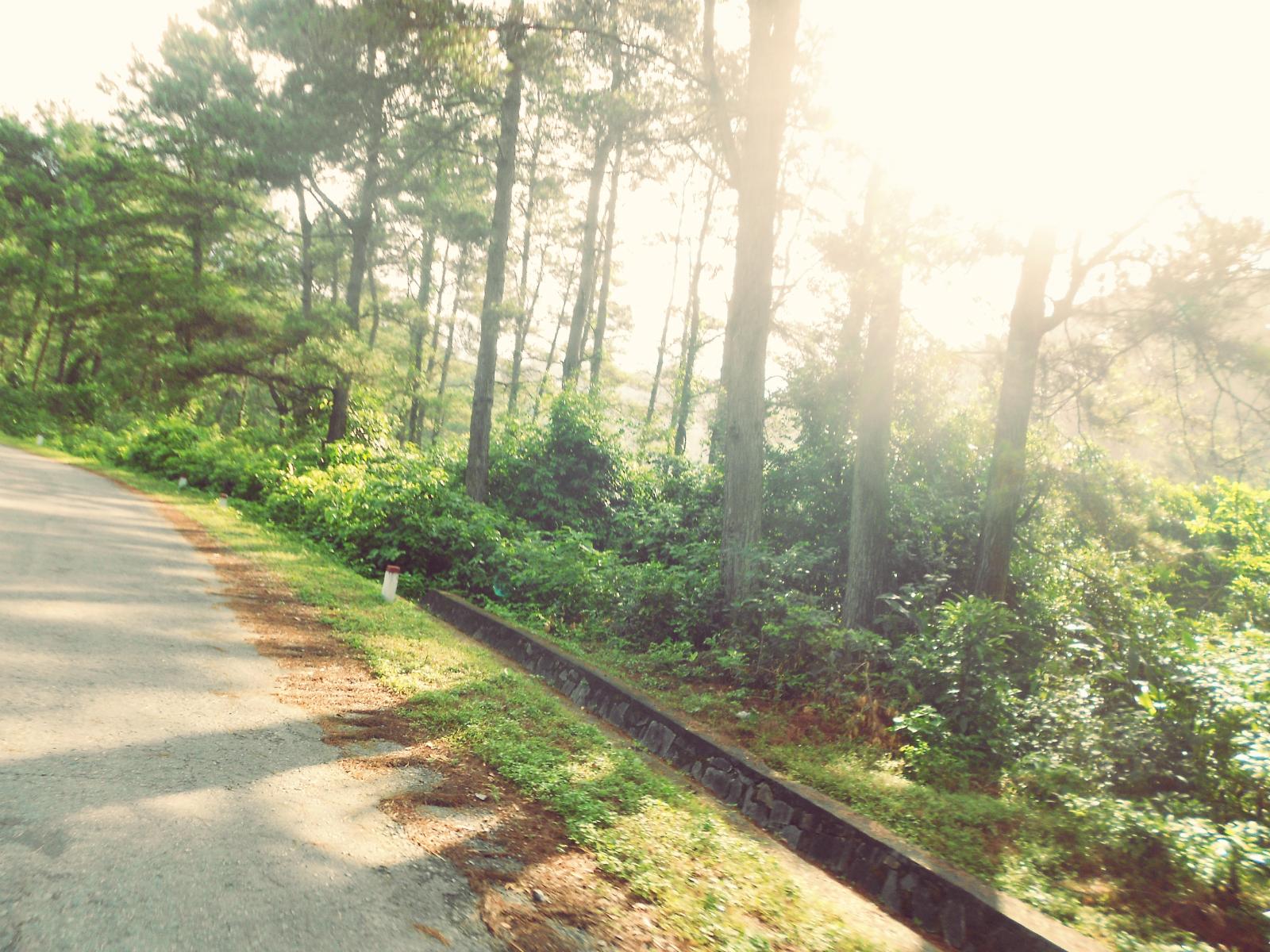 Sunshine by HangLee