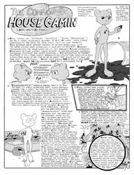 The Common House Gamin (570)