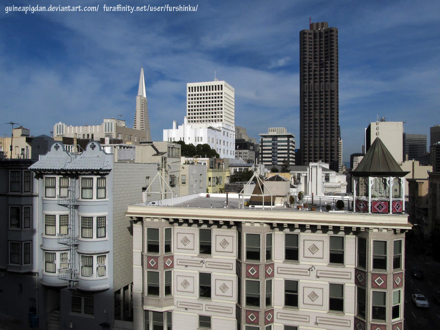 San Francisco cityscape by GuineaPigDan