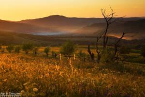 Lipowiec Sunset by yonashek