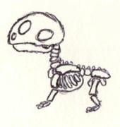 Mudkip Skeleton by Mewstor