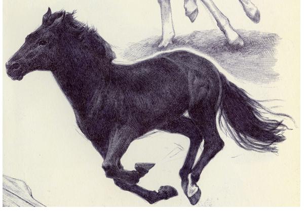 Running Horse By Ryer Ord Star On Deviantart
