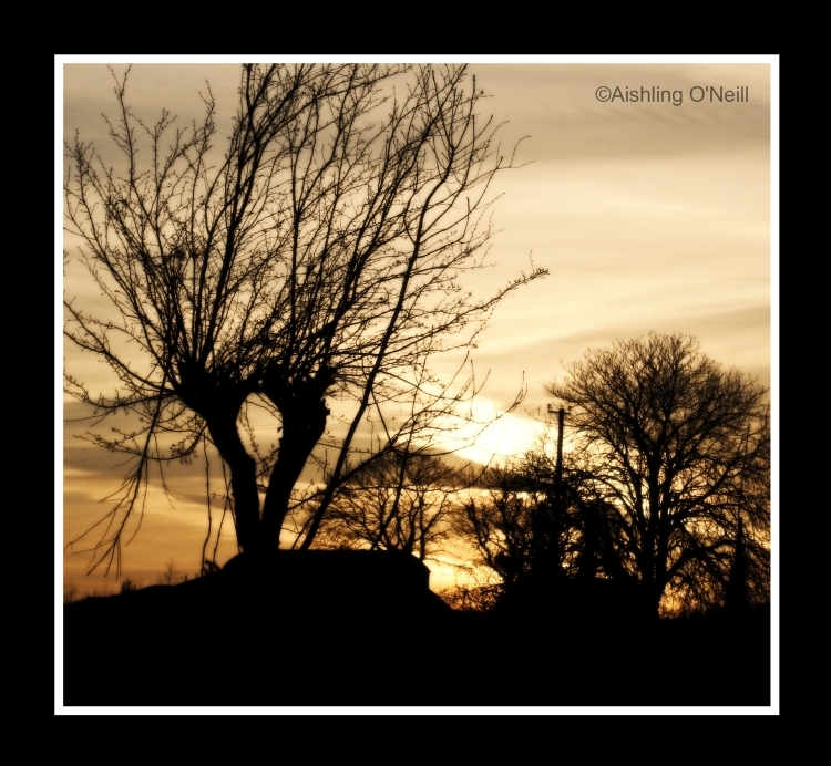 Golden Skies by fluffyvolkswagen