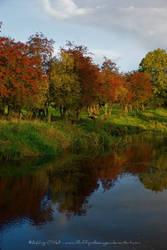 Ireland In Autumn II