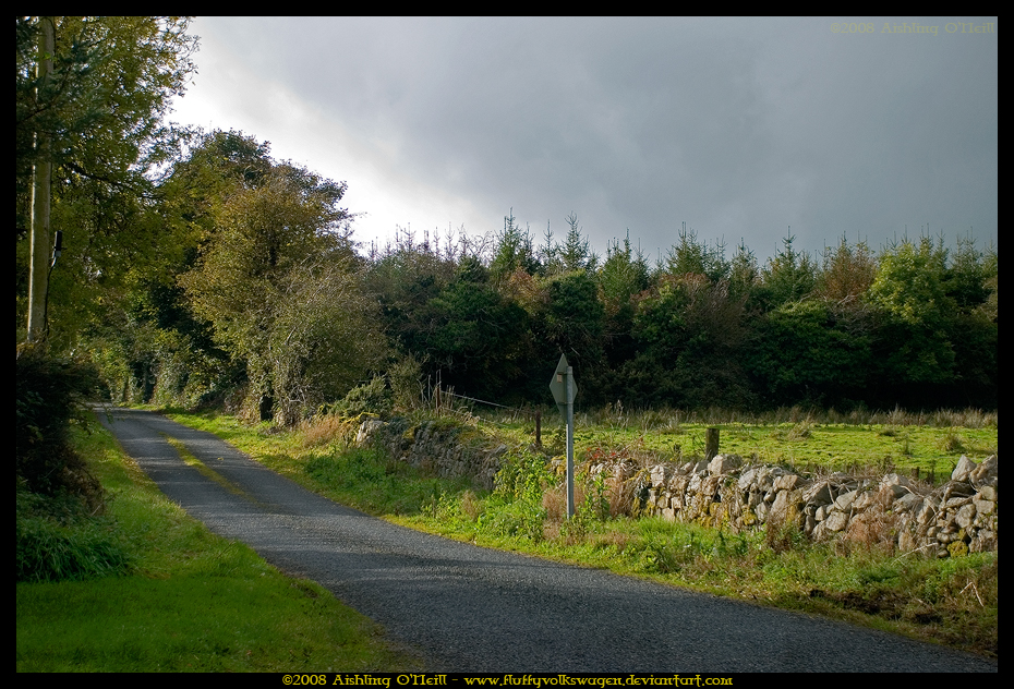 Boreen, Ireland by fluffyvolkswagen