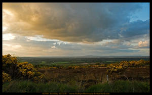 Evening Landscape, Ireland by fluffyvolkswagen
