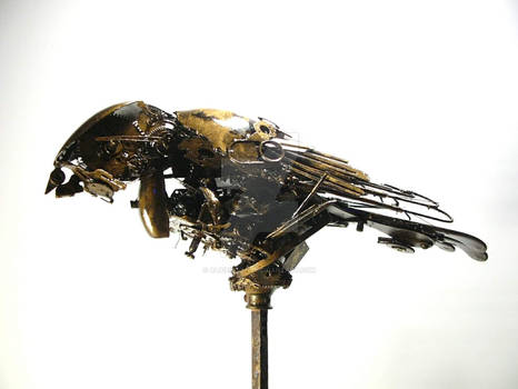 Scrap metal kestrel