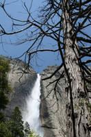 Yosemite Falls by youngdrew