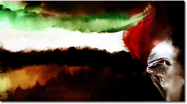 Palestine by seselia
