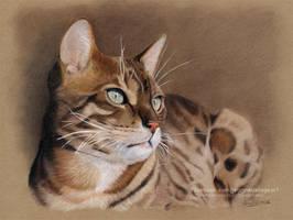 Beautiful Bengal Cat 'Loki' (Speedpainting) by Jeanne-Lui