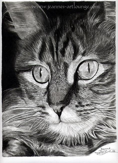 Cat by Jeanne-Lui