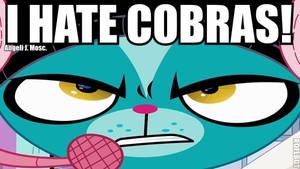 I Hate Cobras Sunil Nevla