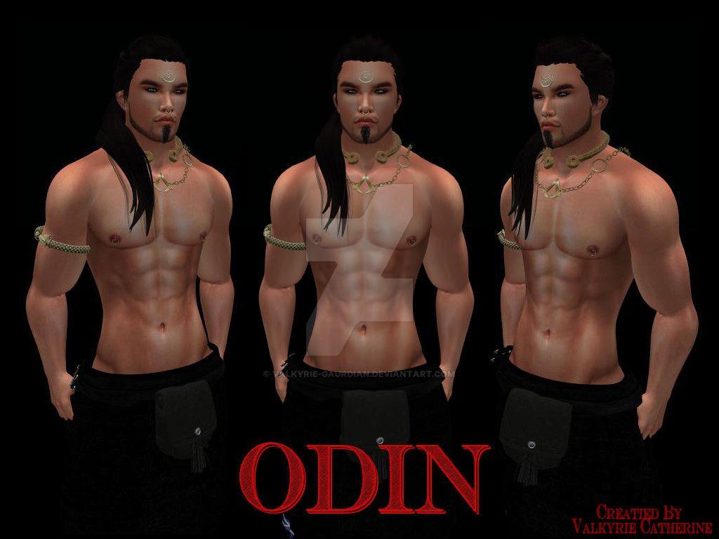 Odin by Valkyrie-Gaurdian