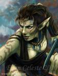 Wild Elf Druid