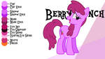 Colour Guide - Berry Punch