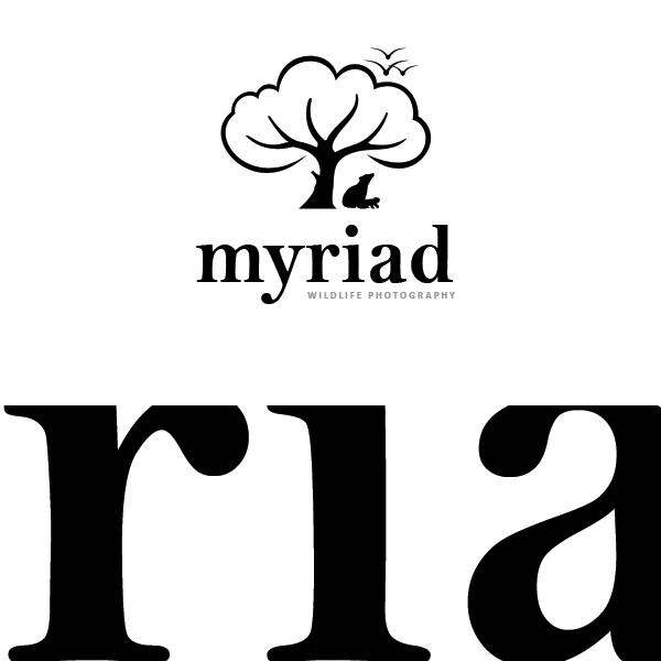 Myriad WildLife Photography by sixthlife