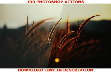 Nature Photoshop Actions - DISCOUNT!