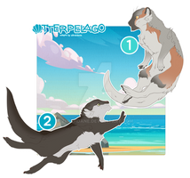 [CLOSED] Otterpelago - two natural cuties for sale