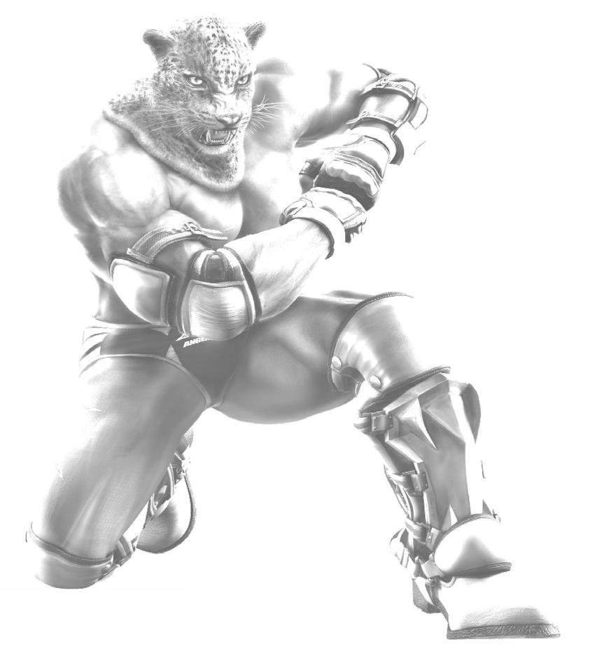 King Tekken Tag 2 by krzysycd