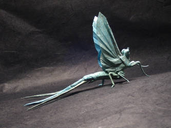 Mayfly v2 by chosetec