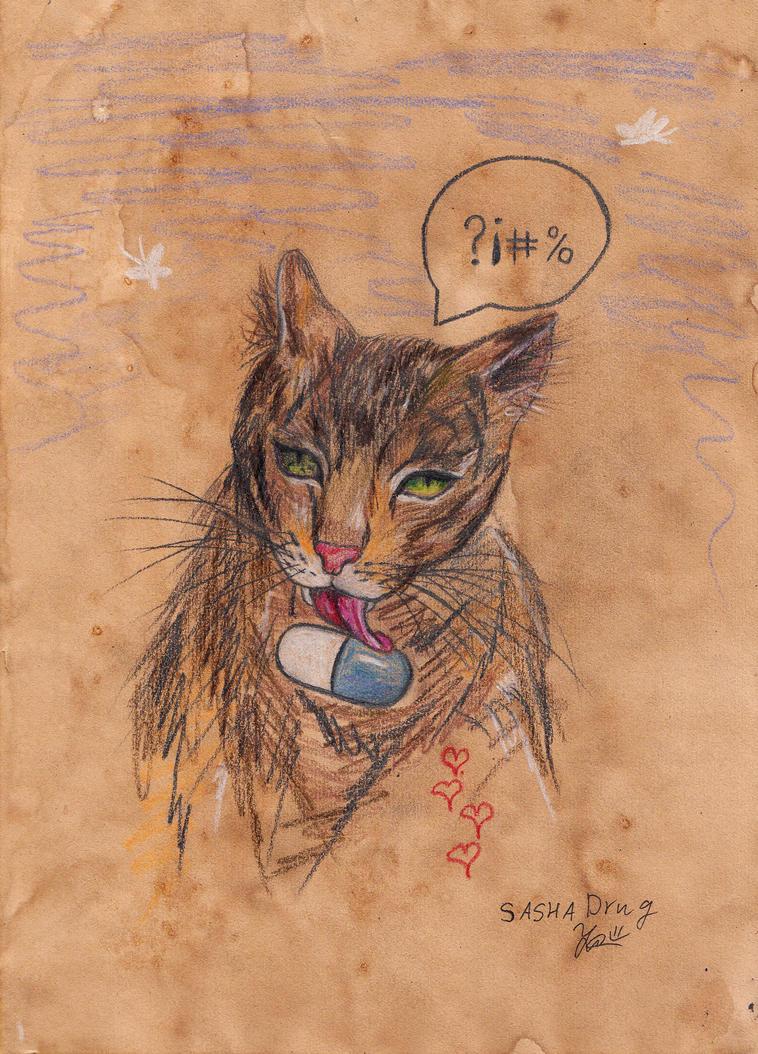Cat Addict by Sasha-Drug