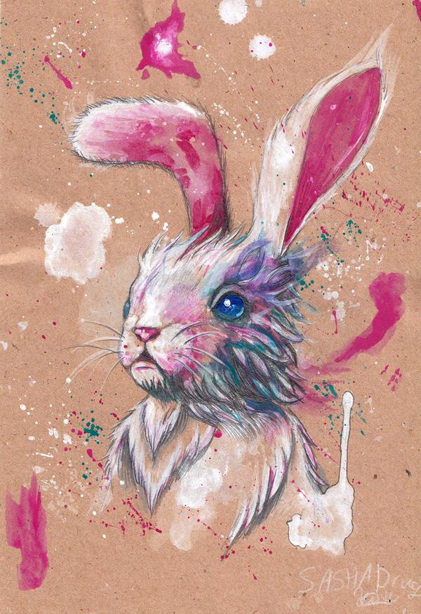 Bunny 27.09.2016 by Sasha-Drug