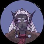 Winter Eladrin icon commission