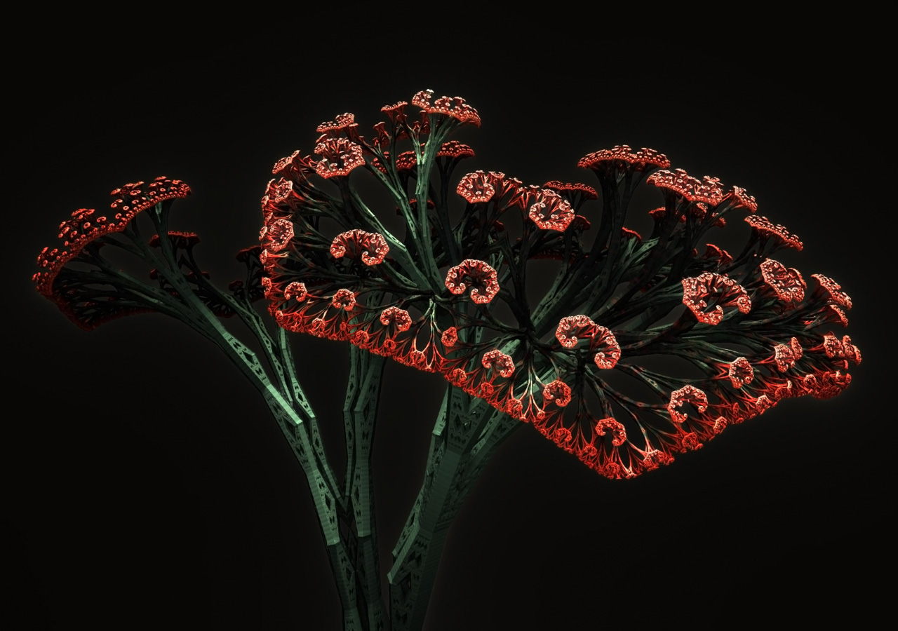 Say it with Fractal Flowers by FractKali