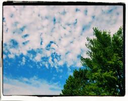 Autumn Sky 2 by phoenixreal