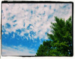 Autumn Sky 2