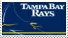 Tampa Bay Rays Stamp by nascarstones