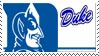 Duke Stamp by nascarstones
