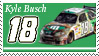 Kyle Busch Stamp 'Indy' by nascarstones