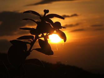The sunset by Gorda-FM