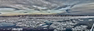 Icy Levis
