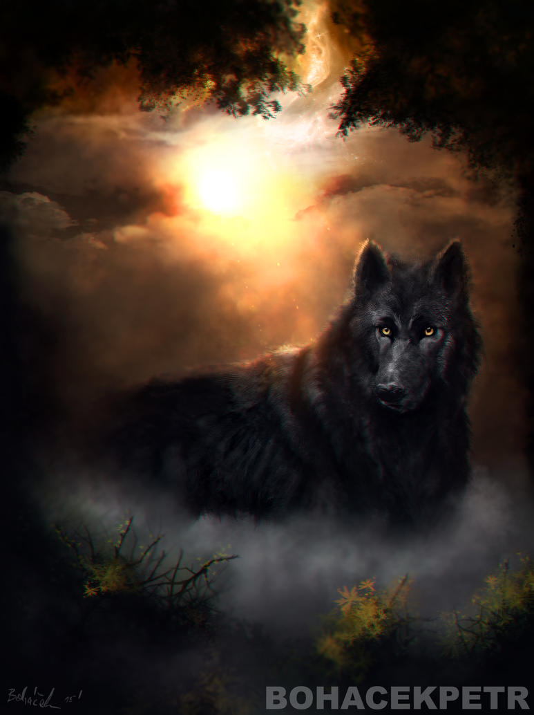 Wolf within Us by Bohy