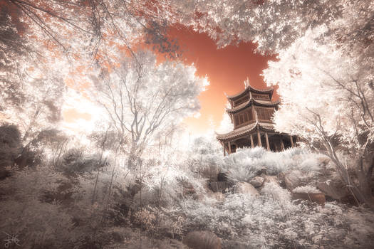 Temple amongst the Trees - Infrared